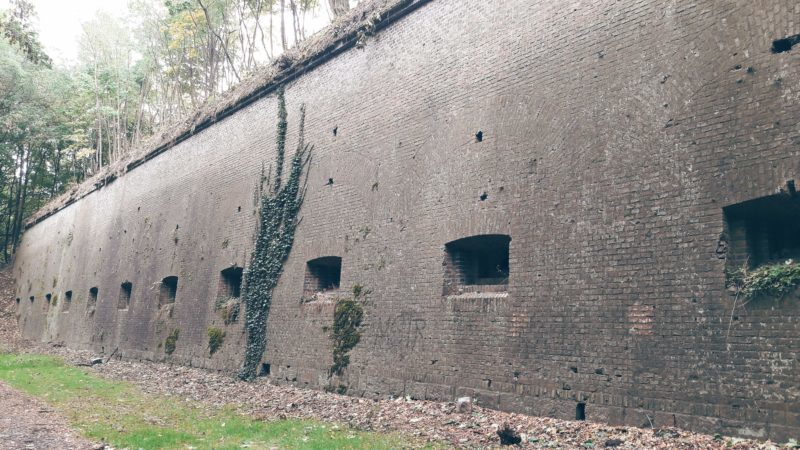 The walls of Fort Winiary, Park Citadel, Poznan