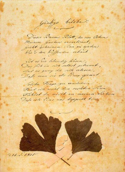 Ginkgo Biloba Poem by Goethe