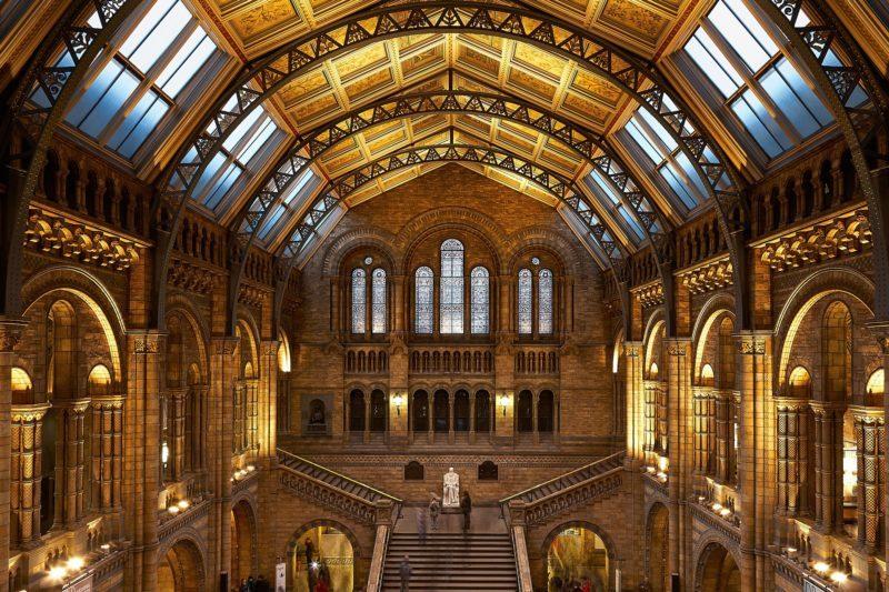 Hinze Hall at the Natural History Museum, London